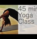 Yoga Physique Articulate: Free Yoga Class (Vinyasa Yoga Forty five min Class) | Fightmaster Yoga Movies