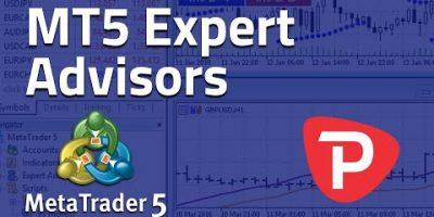 How to use Pro Advisor MetaTrader 5