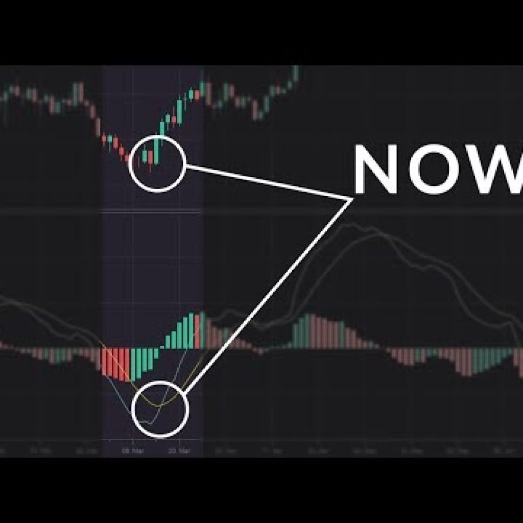The Finest Instances to Use the MACD Indicator